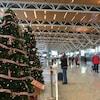 Au premier plan se trouvent deux sapins de Noël. À côté, des voyageurs poussent des chariots chargés de valises dans le terminal international de l'aéroport de Calgary.
