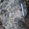Empreintes de mains et de pieds visibles sur une roche.