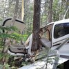 Un avion écrasé au milieu de la forêt
