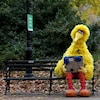 Big Bird assis sur un banc dans Central Park