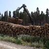 Les entreprises québécoises dénoncent les taxes sur les exportations de bois aux États-Unis.