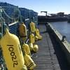 Des bouées sont accrochées sur chacun des casiers à homards empilés sur un quai.