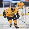 Le joueur de hockey durant un match.