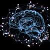 Représentation artistique d'un cerveau entouré de point liés par des lignes.