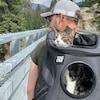 Le chat se trouve dans un sac à dos porté par un homme. Ils se trouvent dans la nature.