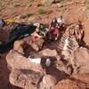 Des paléontologues prennent la pose avec les ossements fossilisés du « Patagotitan mayorum ».