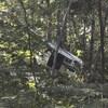 Atterrissage d'urgence d'un hydravion à Shawinigan