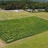 Un labyrinthe dans un champ.