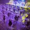 Des gens jouent de la musique et dansent dans des bulles gonflables.