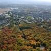 La forêt Château-Bigot, belle à couper le souffle vue des airs, avec ses couleurs d'automne et les rayons successifs des rues environnantes