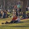 Des dizaines de personnes sont rassemblées en différents groupes dans un parc.