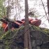 Une carcasse d'hélicoptère dans les bois.