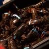 Des homards vivants dans un bac.