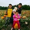 Ikram Khaouani et ses trois enfants dans un champ de citrouille.