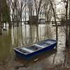 Une chaloupe flotte près d'une maison inondée