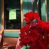 Un carton vert placé sur la fenêtre avant d'une maison affichant « I'm Ok! ».
