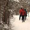 Des gens marchent dans un petit sentier enneigé en forêt
