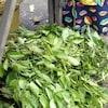 Des feuilles vertes, fraîches et encore sur les branches, empilées les unes sur les autres sur le sol dans un marché.