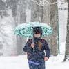 Une femme avec un parapluie marche sur un trottoir entouré d'arbres pendant qu'il neige.
