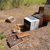 Des ruches en morceaux sur le sol.