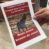 Une feuille de papier avec une photo d'orignal sur laquelle on peut lire: l'appel à l'aide de l'orignal dans la réserve La Vérendrye, nous avons besoin de vous!