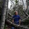Pat Ryan entouré d'arbres renversés.