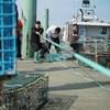Des pêcheurs sur le quai tirent des gros cordages de pêche.