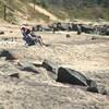 Des ouvrages d'enrochement, partiellement effondrés, jonchent la plage de Val-Marguerite, où quelques personnes sont assises au soleil.