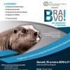 L'affiche du 7e gala BRAVO Entreprises! où l'on voit un castor en bronze.