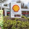 Affichage du prix de l'essence d'une station essence Shell. Le prix affiché est de 151,9$