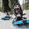 Des jambes qui marchent dans la neige avec des raquettes