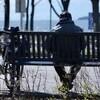 Une personne se repose sur un banc public, au centre-ville de Rimouski.
