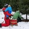 Coupe de l'arbre de Noël dans un champ.