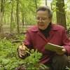 Estelle Lacoursière observe une plante dans la forêt en tenant un calepin à la main.
