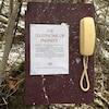 Un vieux téléphone jaunâtre est accroché à une planche de bois installée dans la forêt avec une affiche intitulée: le téléphone de l'infini.