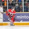 Un joueur de hockey sur la patinoire