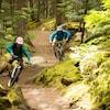 Un homme et une femme font du vélo de montagne dans un sentier en forêt.