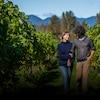 Melissa et Laurent marchent au travers de leurs vignes.