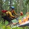 Deux pompiers avec des hâches tentent de stopper un feu dans une forêt.