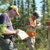 Deux chercheurs enfoncent une foreuse dans la forêt pendant que Fabrice Calmels prend des notes.