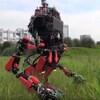 Un robot Schaft se promène dans l'herbe.
