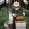Un apiculteur sort un rayon d'une ruche pour en récolter le miel.