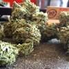 Du cannabis en fleurs séchées.
