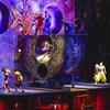 Des artistes de cirque en action lors d'un spectacle du Cirque du Soleil.
