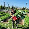 Une horticultrice au milieu d'un immense jardin, elle tient dans ses mains un panier de légumes.