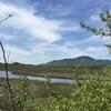 Marais-de-la-rivière-aux-cerises avec vue sur le Mont Orford
