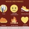 Un écran rouge vin sur lequel on voit des images qui correspondent à des catégories de mots sur lesquels l'utilisateur de l'application peut cliquer pour entendre des mots du dialecte moose de la langue Cri. On y voit notamment un coeur, un bonhomme sourire ou encore le cadran d'une horloge.