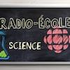 Image numérique d'un logo de Radio-Canada dessiné à la craie sur le tableau.
