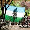 Le drapeau de la république de Cascadia accroché à deux arbres lors d'un rassemblement.
