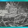 En équilibre sur les billots, les draveurs se servaient d'une longue pique pour diriger le bois et briser les embâcles.
